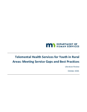 Telemental Health Services for Youth in Rural Areas: Meeting Service Gaps and Best Practices